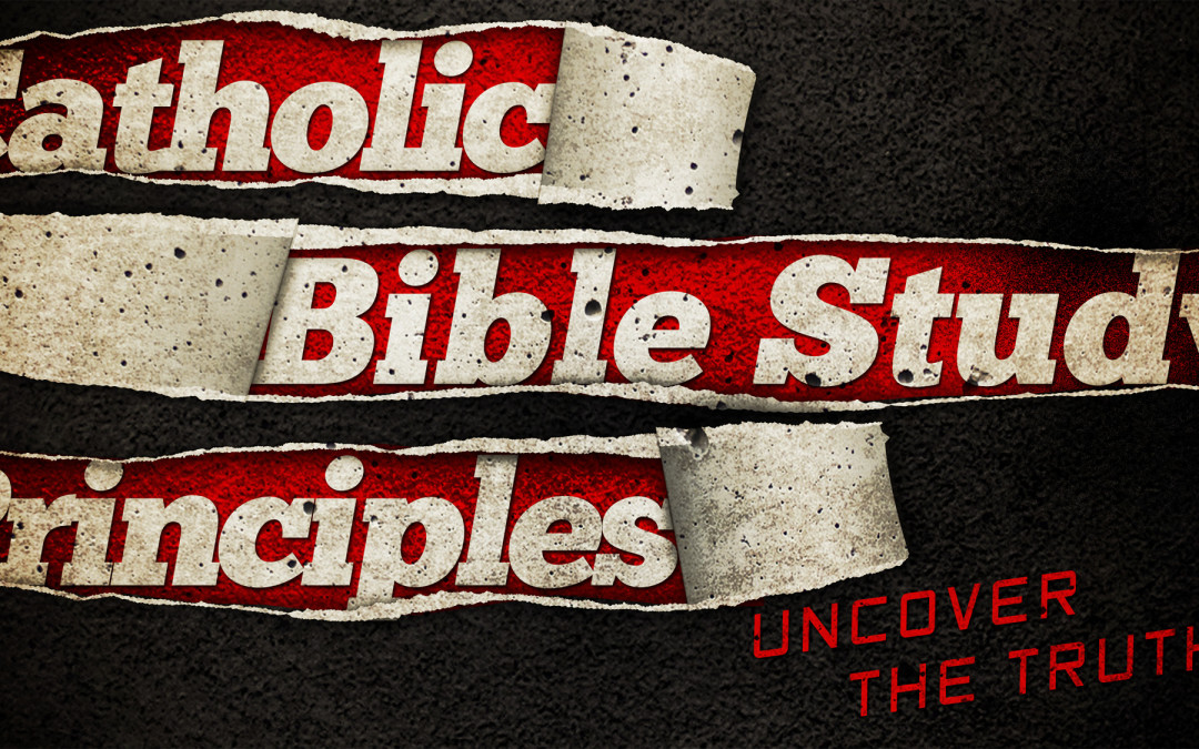 Catholic Bible Study Principles | TSM #38